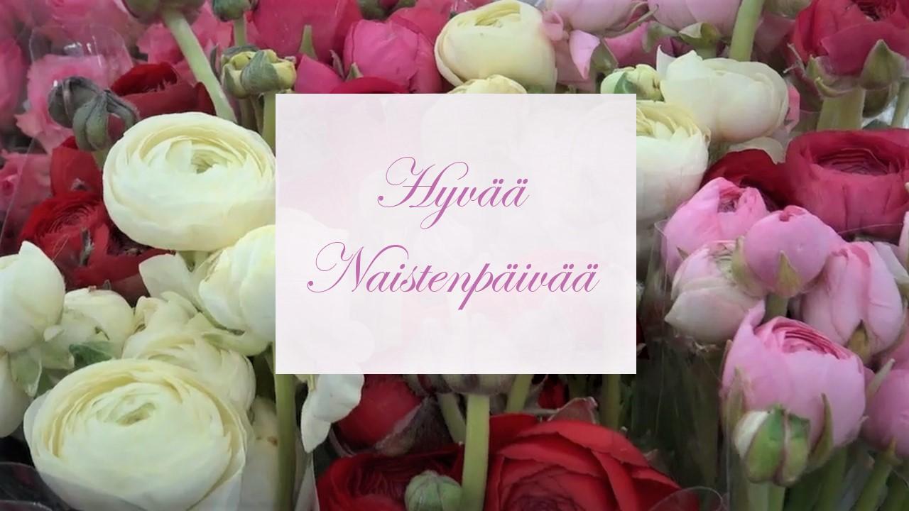 Hyvää naistenpäivää -toivotus, taustalla valkoisia ja punasävyisiä tulppaaneja